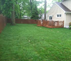 expertly mowed residential lawn